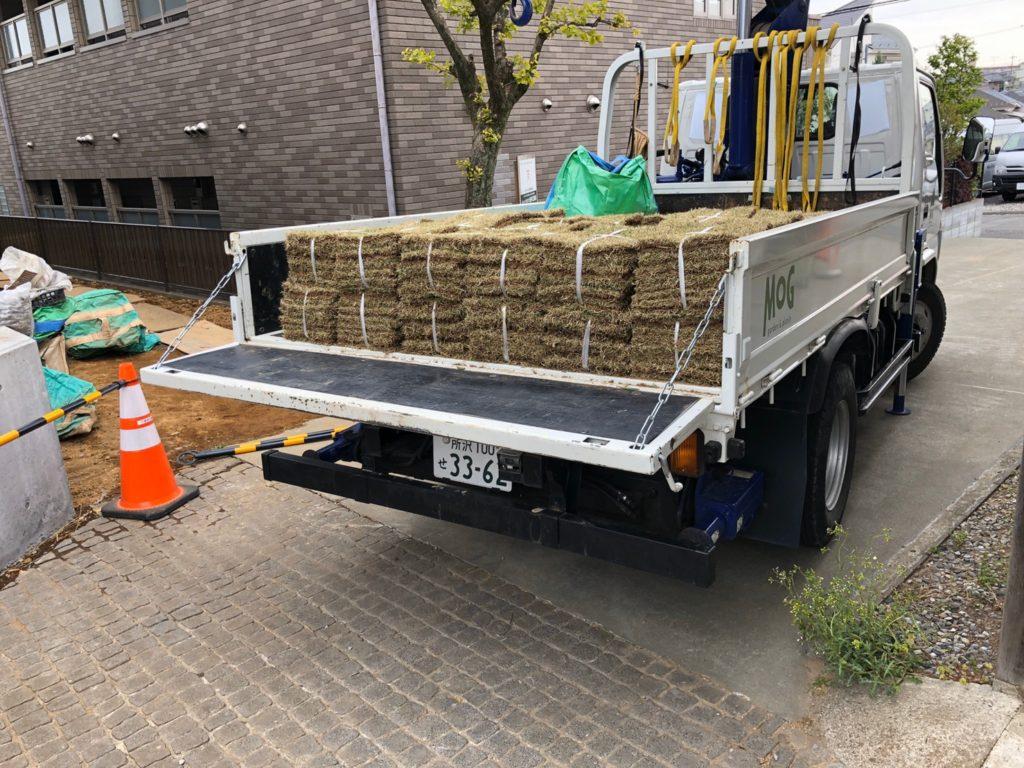【MOG】ドライガーデン作り 芝張り